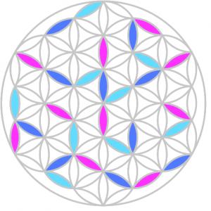 discipl/Issues/demoBRI/logo.png